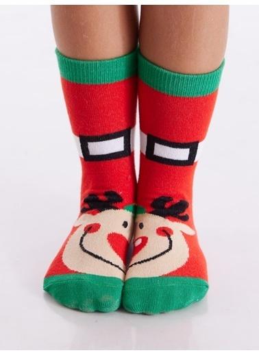 Denokids Geyik&Penguen Çorap Takım Kırmızı